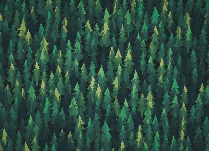 Бумажный лес лес