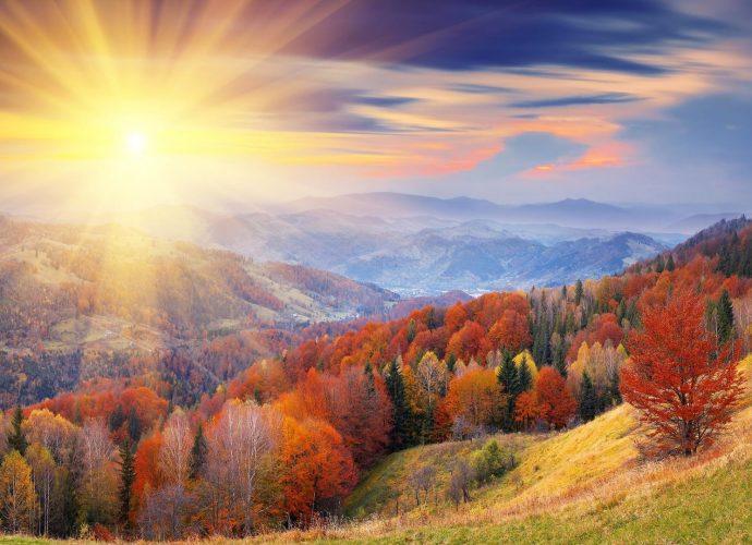 Осенний лес солнце осень лес горы