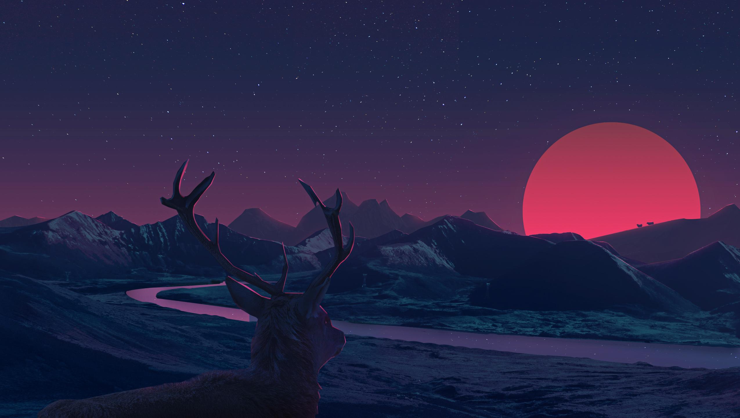 Северный олень олень закат