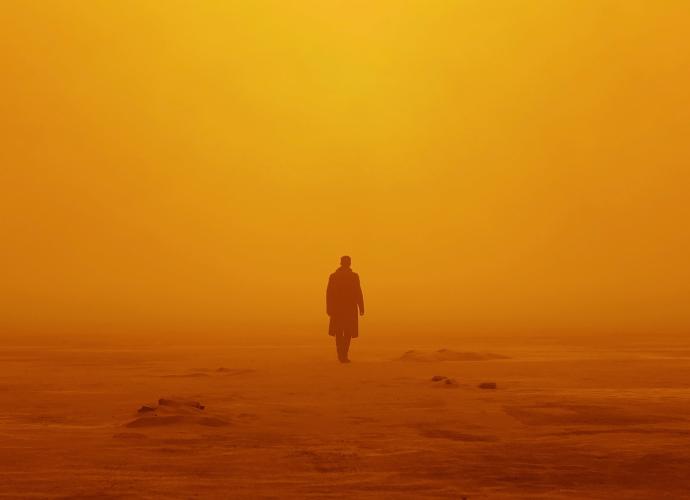 В поисках тебя туман пустыня мужчина