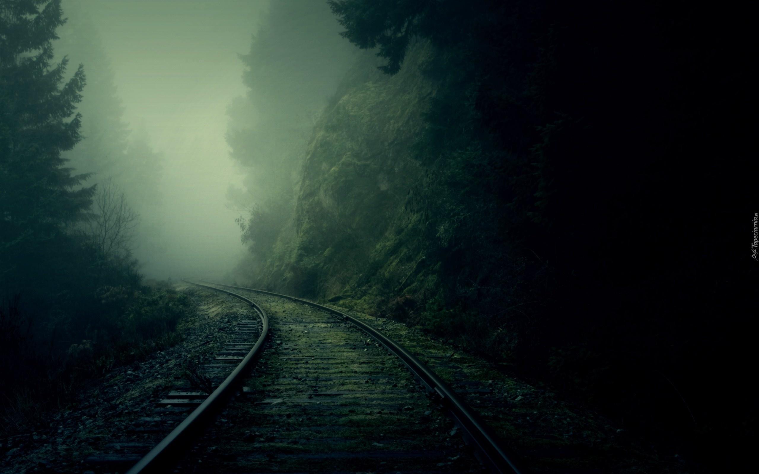 Заброшенная железная дорога туман лес железная дорога