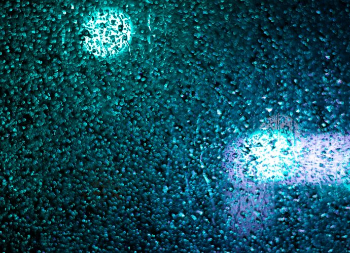 Зелёный свет светофора стиль ночь