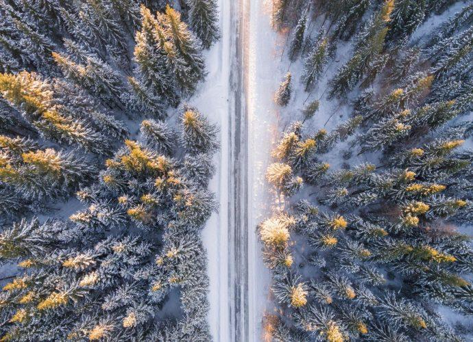 Зимняя дорога лес зима дорога