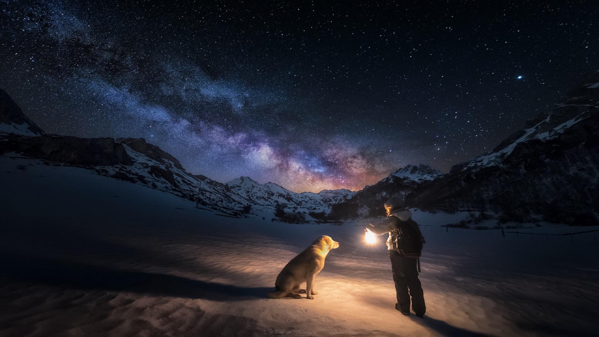 Лучшие друзья собаки ночь звезды горы