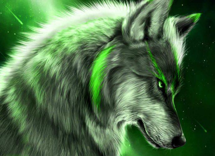 Зелёный волк ночь неон звезды волк