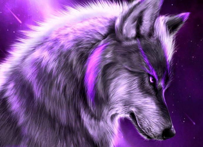 Фиолетовый волк ночь неон звезды волк