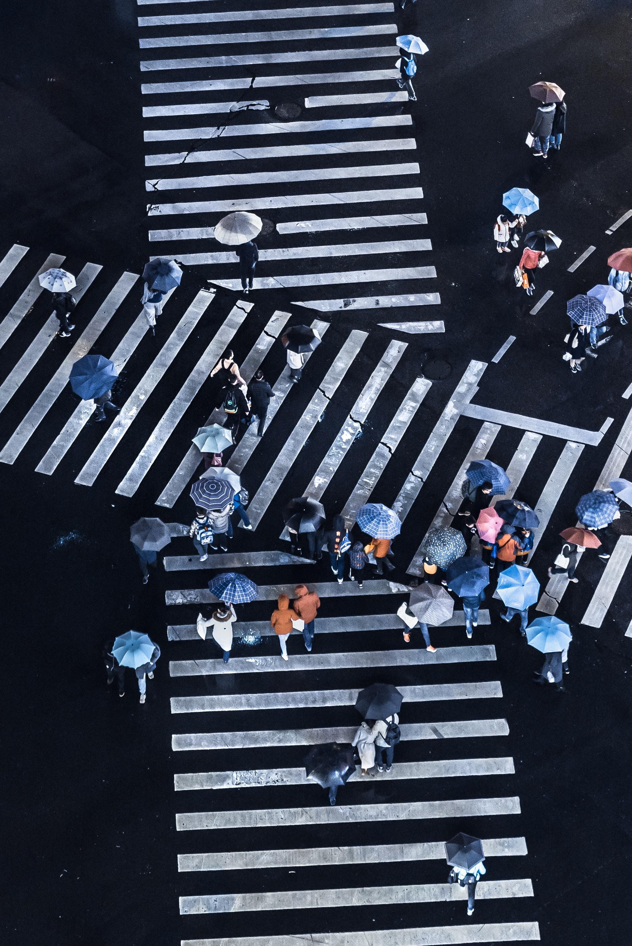 Пешеходы дорога город