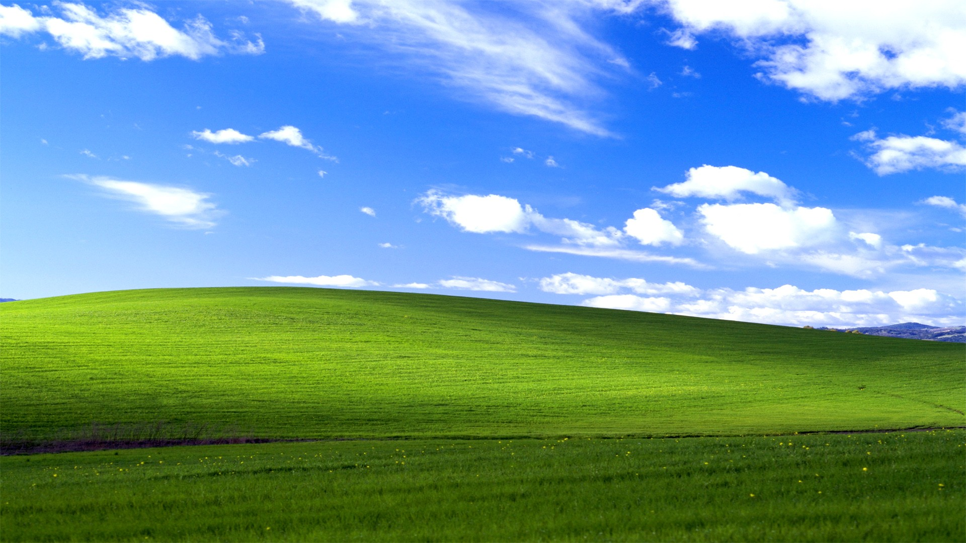 Windows XP Windows