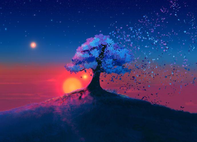 Волшебное дерево закат дерево