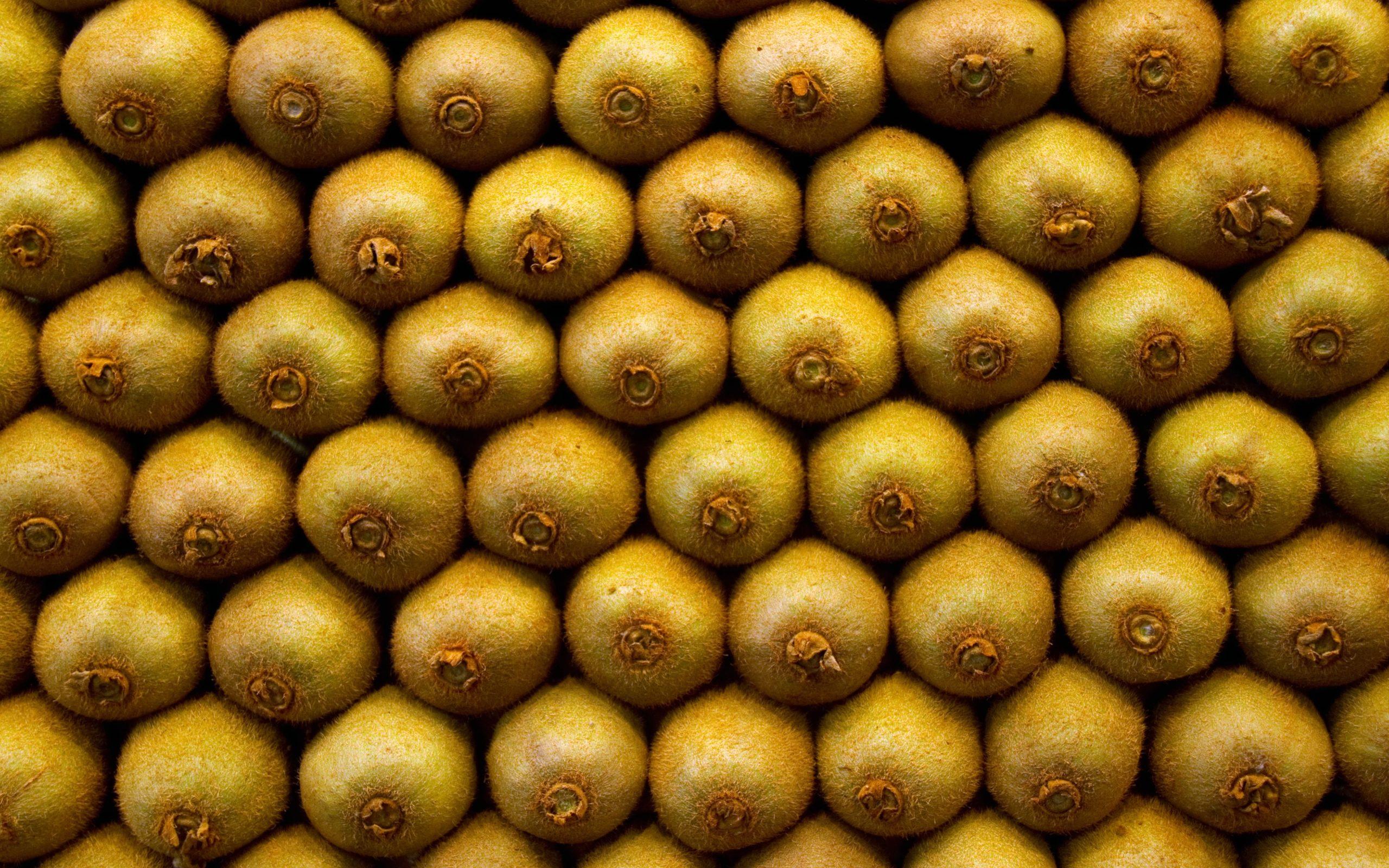 Киви фрукты киви
